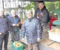 Apfelmassen werden im Tierpark gepresst