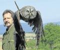 Der Tierpark bekommt jetzt eine Falknerei