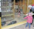 Tierpark Niederfischbach weiter im Aufwärtstrend